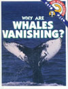 Cover of Why Are Whales Vanishing?